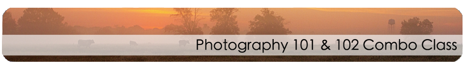 Photography_101_& 102_combo_long_banner